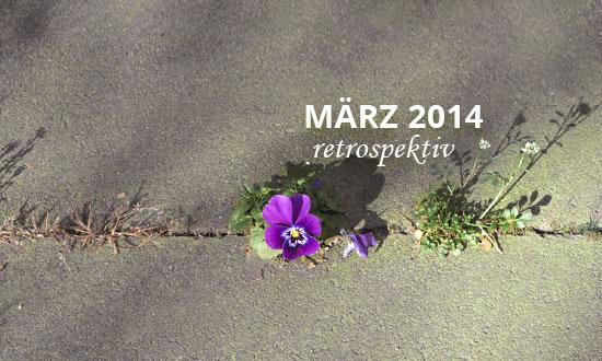 daklue März 2014 retrospektiv